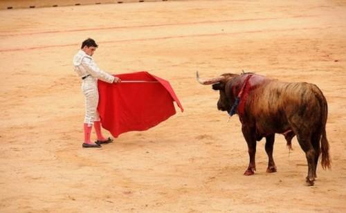 Символ Испании фото