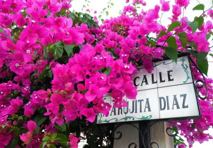 Цветы Испании